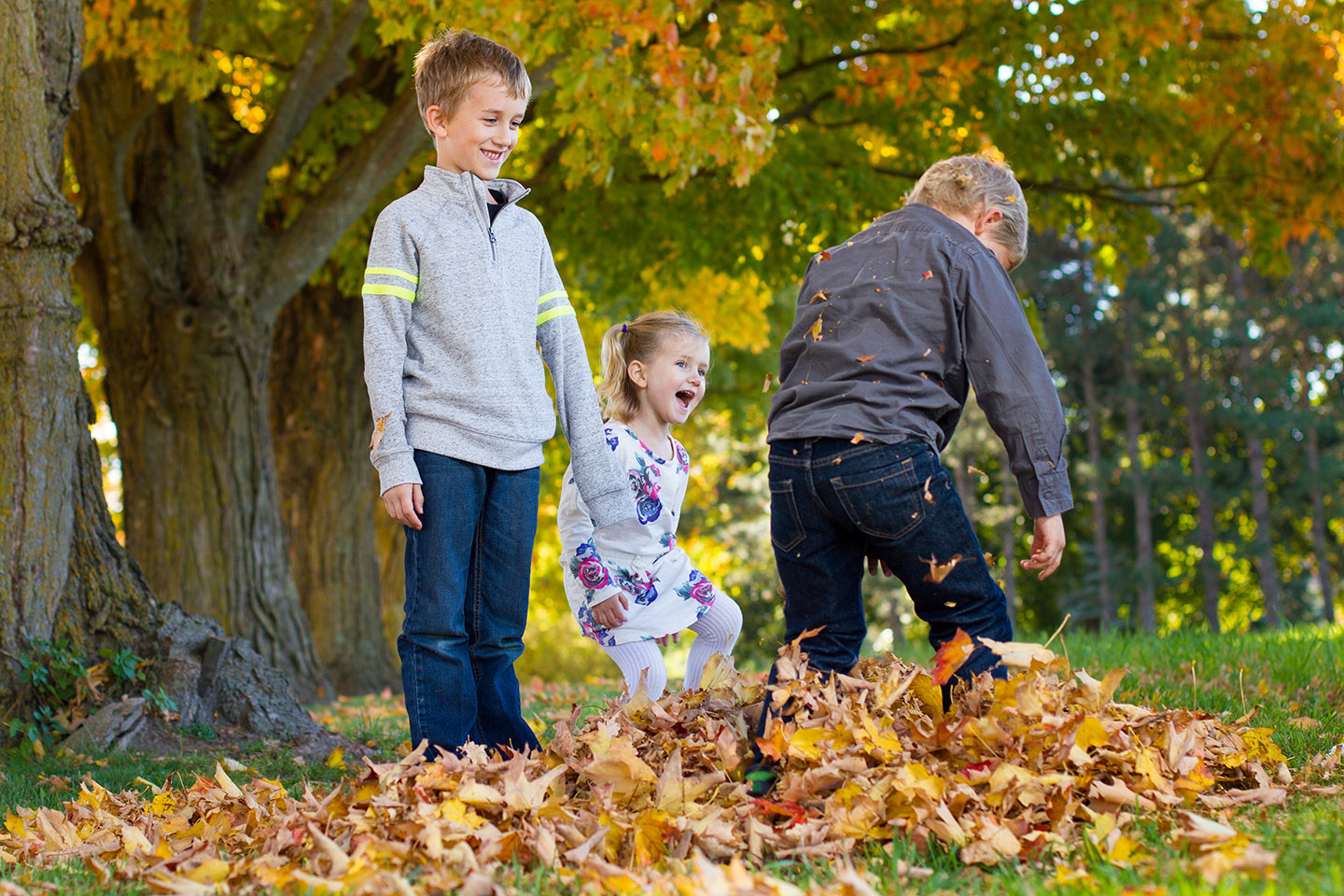 Fun photo of children playing in leaves in an autumn photo in Hockley, taken by Frank Myrland Photography