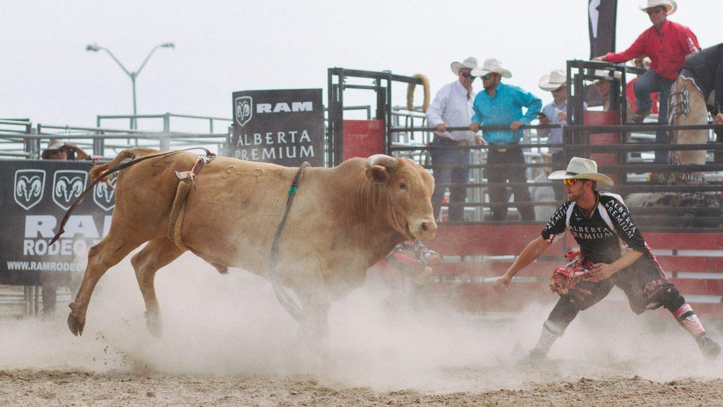 orangeville-rodeo-2018-9790